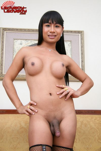 Ladyboy Ladyboy torrent